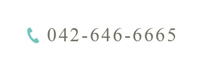 042-646-6665